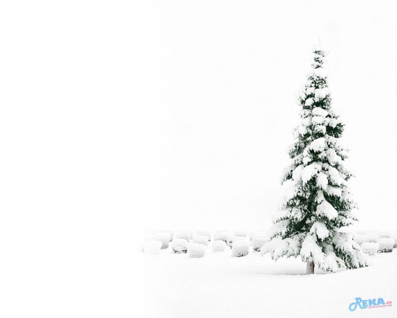 christmas_17.jpg
