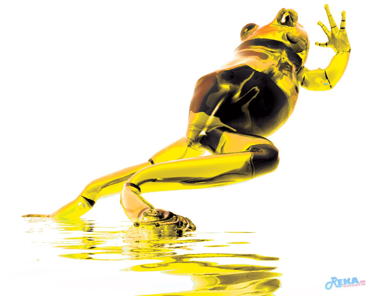 Escape_Yellow_Frog_by_Digital_Virtuosity.jpg
