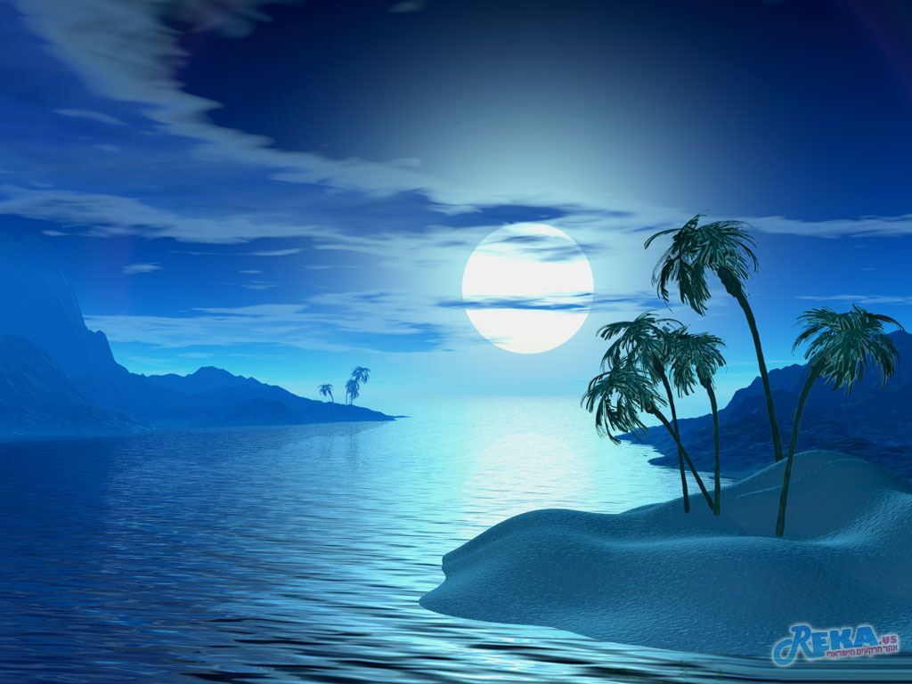 Tropic_Night.jpg