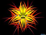 Sun_Flower_by_blendartnub.png