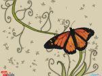 wallpaper_Butterfly.jpg