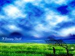 A_Dreamy_World_1st