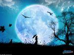 Like_the_wind_by_webby85.jpg