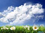 Sky_and_flowers_by_dualTRX.jpg