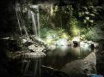 enchantedforest_1280x1024.jpg