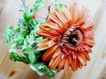 flowers_241