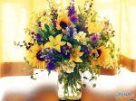 flowers_252