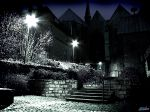 NightShot_5_2048.jpg