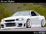 Nissan_Skyline_BNR34_by_danhateskevs.jpg