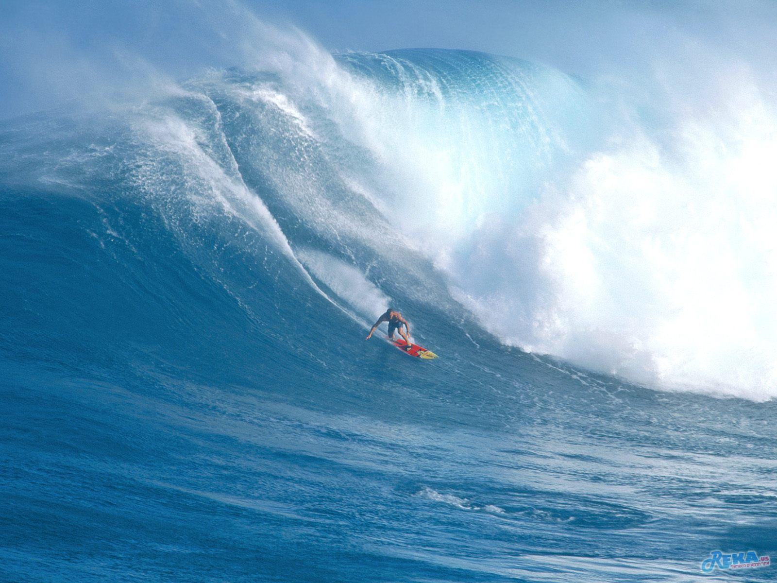 Surfing Jaws, Maui, Hawaii.jpg
