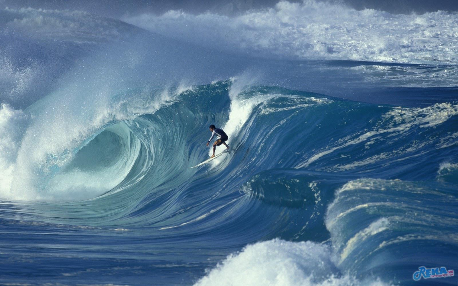 surfing wallpapers windows 7 (1)
