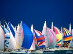 Regatta, Lake Constance, Germany.jpg