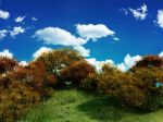 01202_woodlandhill_2560x1600