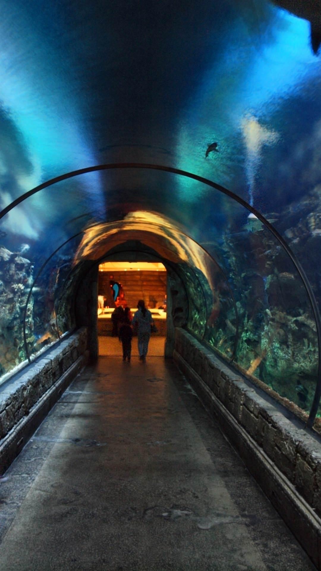 Underwater_Passage_1080x1920