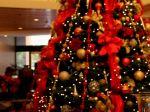 Christmas_Tree_1080x1920