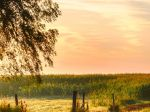 Looking_Sunrise_Landscape_1080x1920