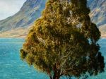 Wallpapers-For-Galaxy-S4-Landscapes-17