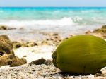 Young_coconut_on_beach_1080x1920
